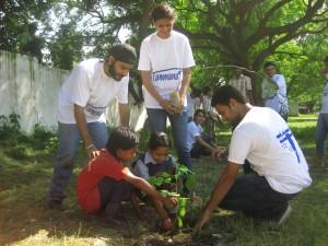 Event 25 : Tree Plantation at Govt. School